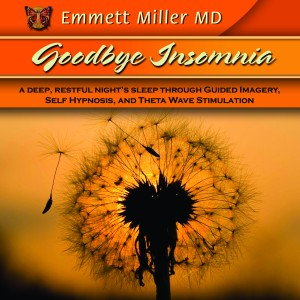 Buy Goodbye Insomnia CD
