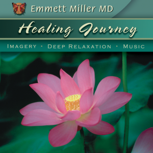 Buy Healing Journey CD